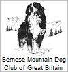 Burnese Mountain Dog Club